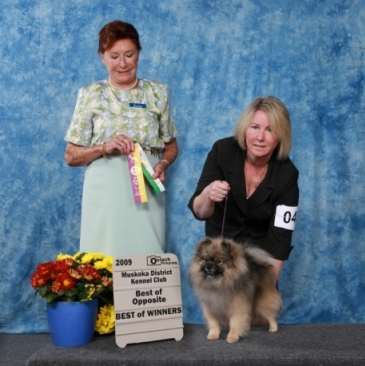 BOW for Doc under Judge Phylis Wolfish