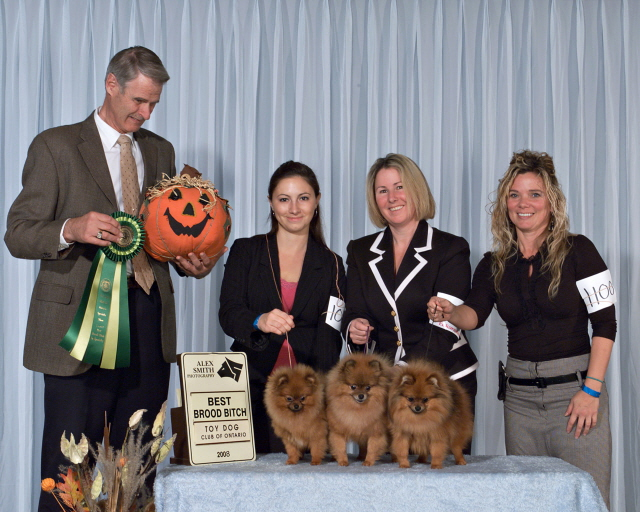 Judge John Cole gave us best Brood in Specialty Oct 2008